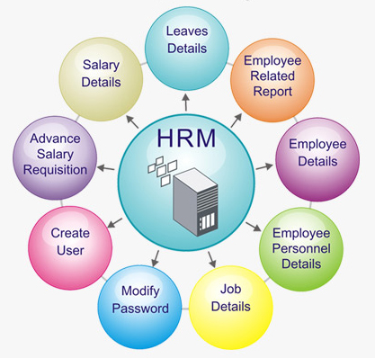 Evaluation of strategic hrms in erp